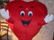 Herz Kostüm