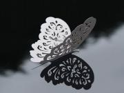 Schmetterlinge perlmutt